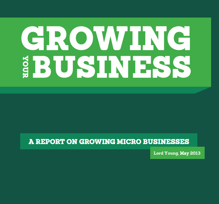 Growing your business report cover