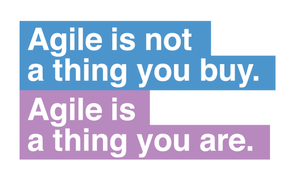 Agile is not a thing you buy. Agile is a thing you are.