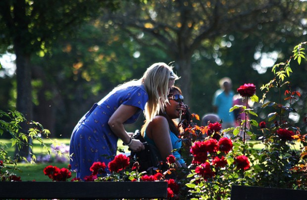 From the photographer: RHS Wisley - Oct 2011 - Caring Candid - Sharing a Joke While walking around the gardens at Wisley I happened to see this wonderful photo opportunity. I remember me pushing my Mother around here a few years ago recalling just how many steep slopes there are so to this beautiful girl quite happily sharing a moment of laughter with her companion brought me great joy. I have no idea what the relationship between the two women is as I didn't get the chance to have a conversation with them, unlike me, I know, but there did seem to be a close bond which made the whole moment even more heart-warming.