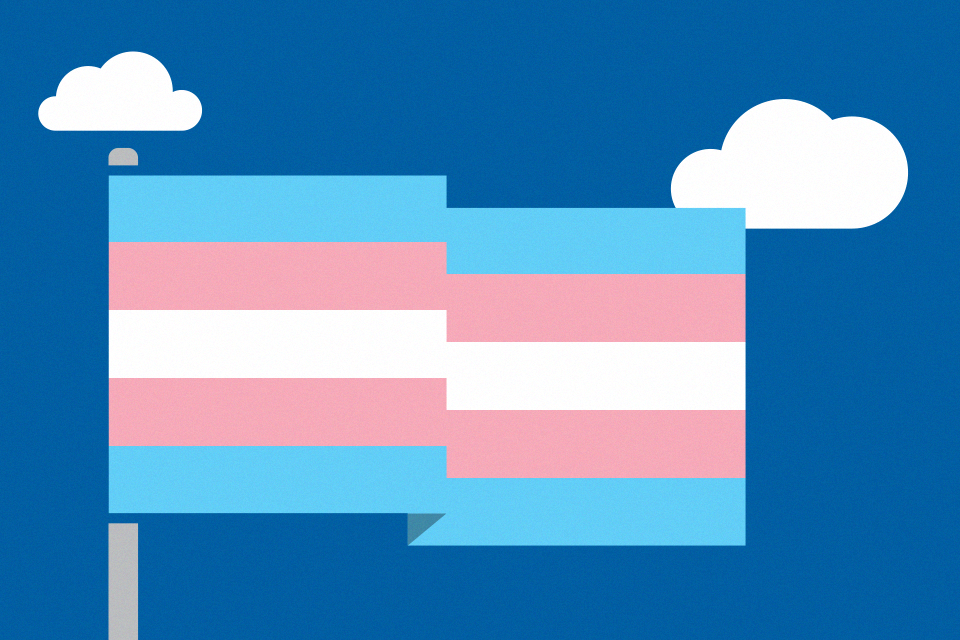 The transgender flag