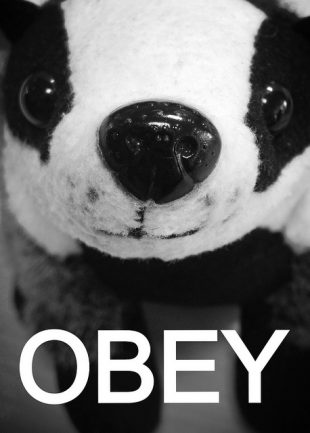 A photo of a toy badger with the word 'OBEY' in large letters