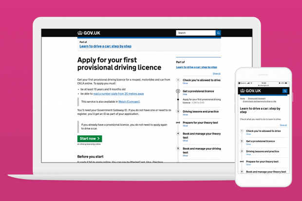 A screenshot of the Apply for your first provisional driving licence step by step page